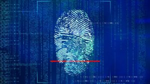 Suggestions on Stopping Identity Theft