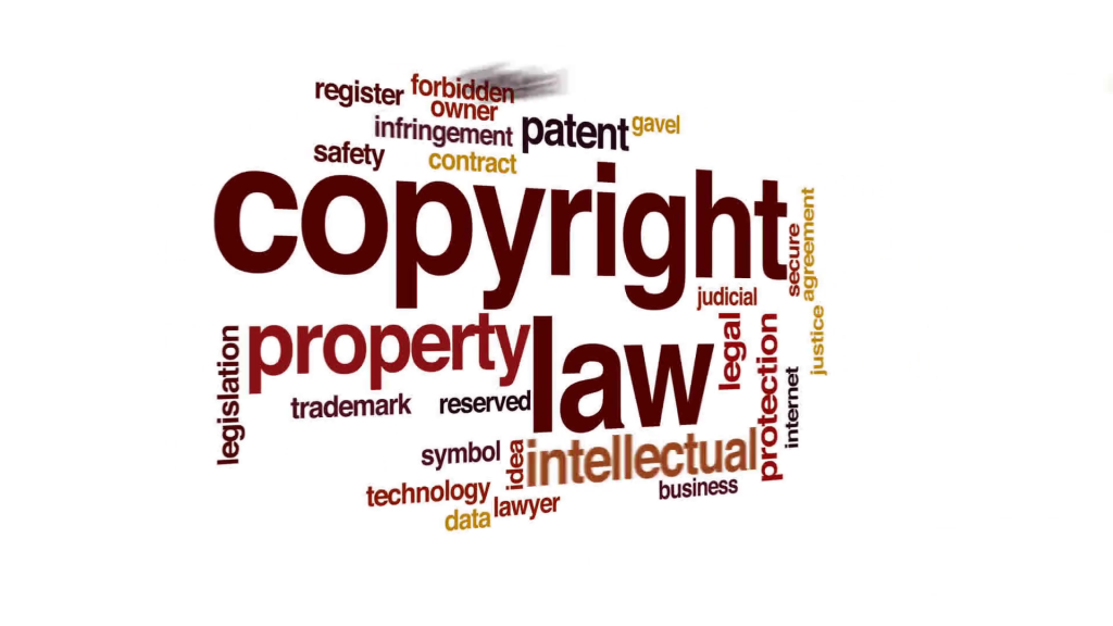 Copyright Infringement Litigation