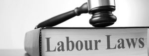 Overview of the Federal Labor Law Statutes