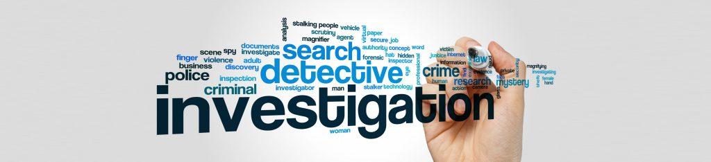 Snooping Detective for Fraudulence in Mumbai